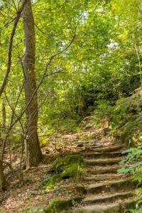 Wandern in der Sächsischen Schweiz. Vom Campingplatz auf nach Rathen
