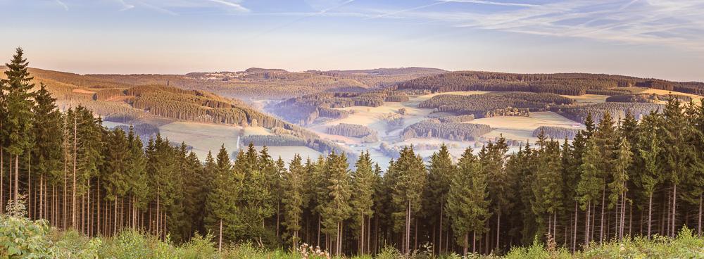 mein absoluter Favorit: ein Panorama über das Tal bei Sonnenaufgang, Winterberg / Züschen