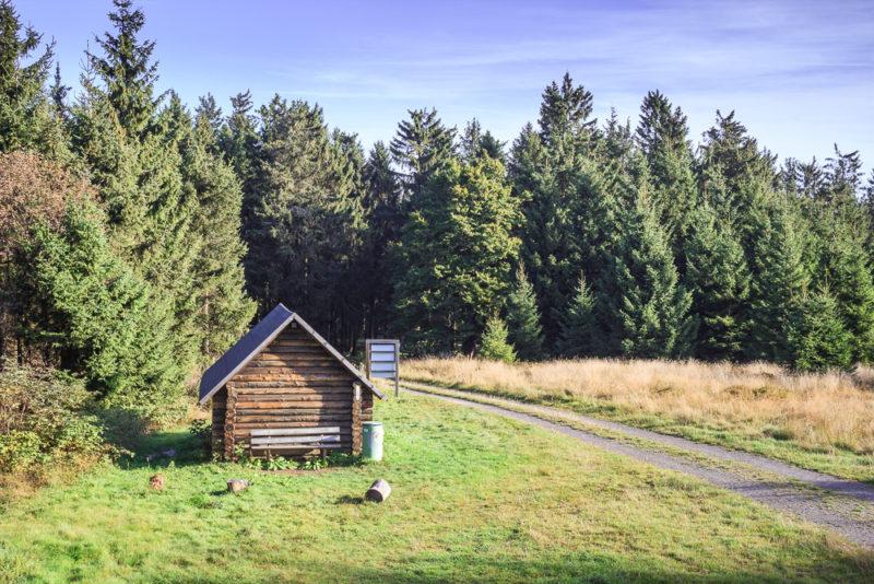 Kleine Waldhütte In Winterberg / Züschen