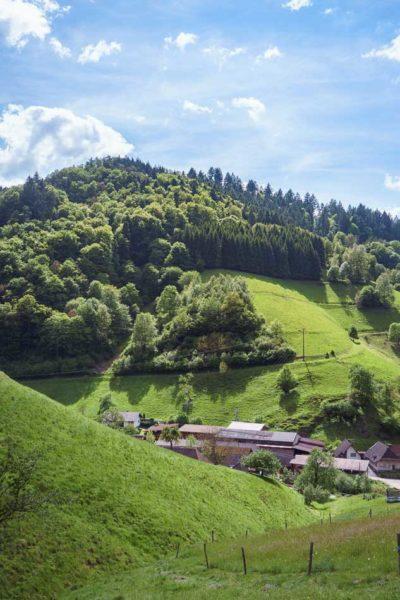 Wandern im Münstertal