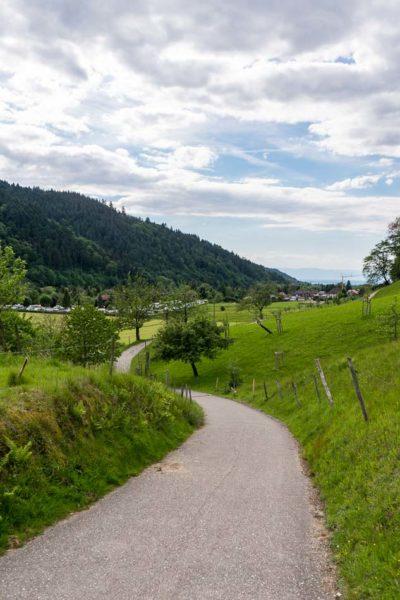 Wandern im Münstertal - Schwarzwald
