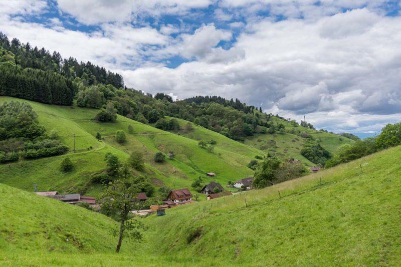 Wandern im Schwarzwald - eine Traumhafte Landschaft im Münstertal